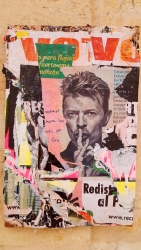 bowie50x70